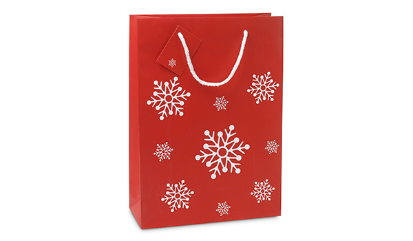 gift-paper-bag-CO